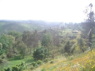 uitzicht vanuit camionet, quinta dacerca