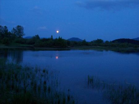 Cerknica-meer bij volle maan