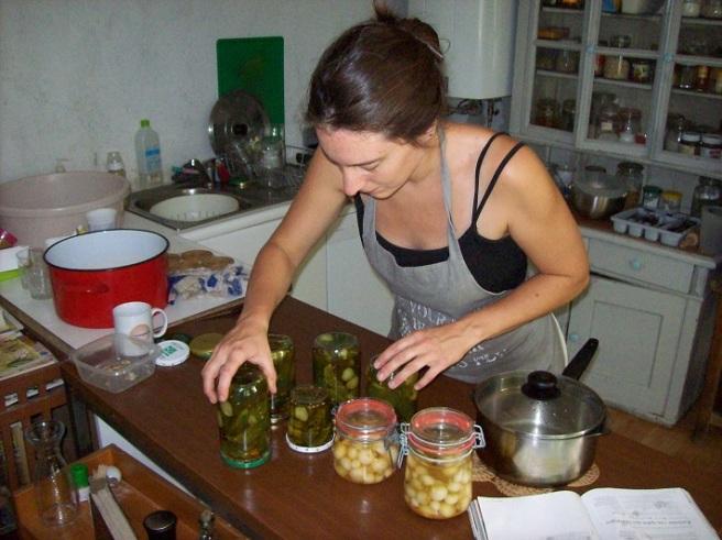 inmaken zilveruitjes en augurken