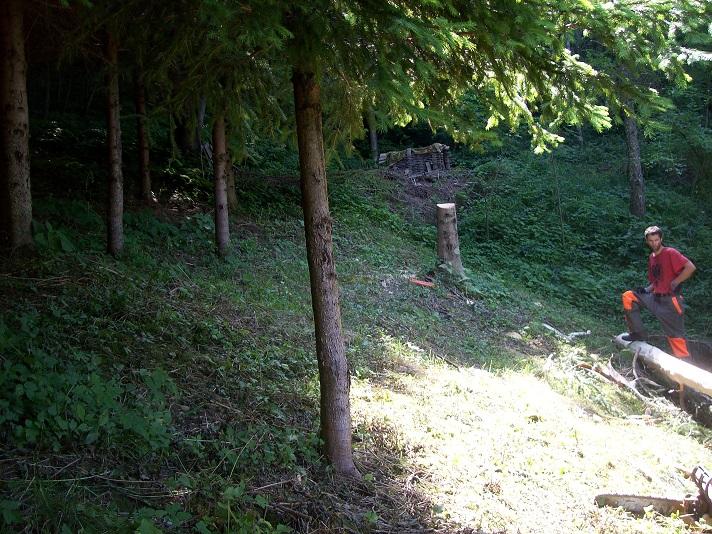 start aanleg blauwe bosbes plantage