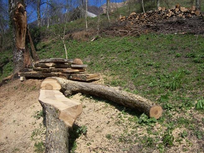 zitbank, planken en houtstapel (op achtergrond)