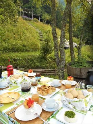 ontbijt aan de vijgenboom