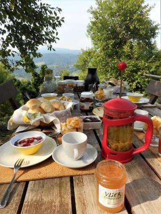 ontbijten aan de vijgenboom